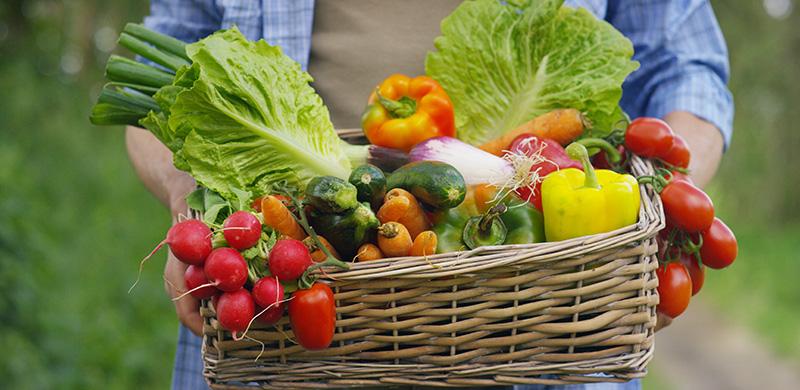 Geflochtener Korb mit verschiedenen Gemüse wird getragen